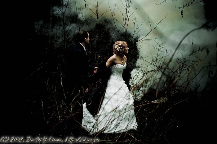 очень таинственный лес. свадебное фото.