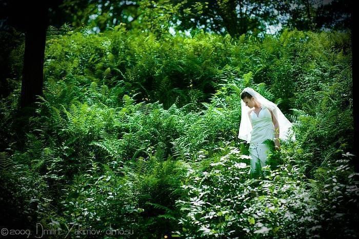 фото со свадьбы в лесу