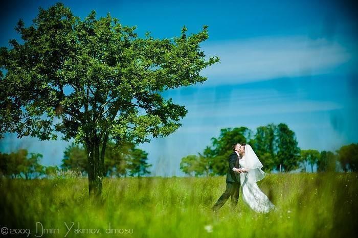 романтичное свадебное фото