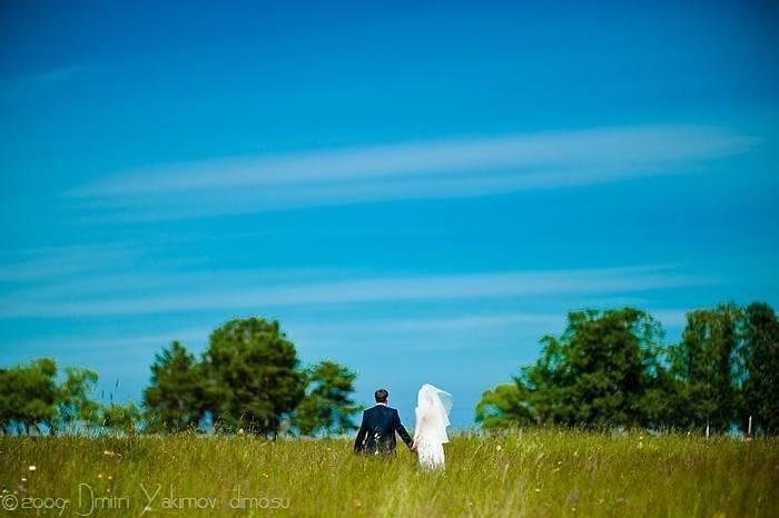 свадебное фото, русское поле