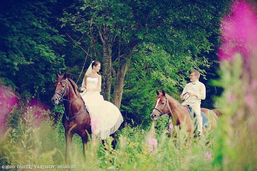 жених и невеста на лошадях