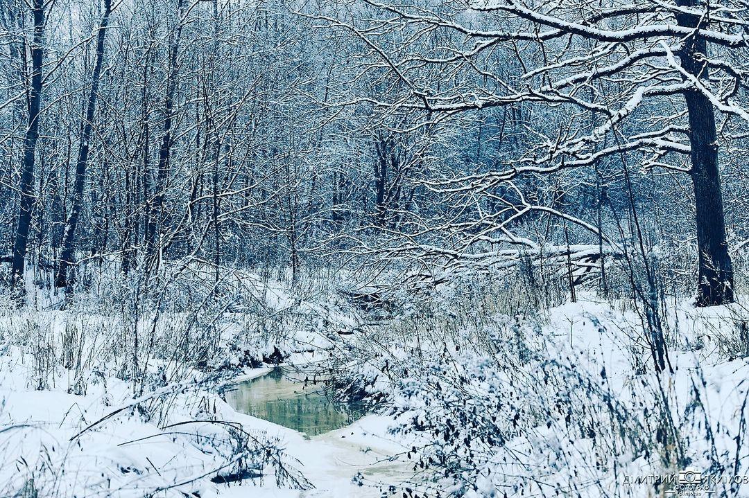 145117834 185882929981141 1947432304783725189 n - Наконец-то на Северо-Запад пришла нормальная зима! Очаровательный и прекрасный Ш...