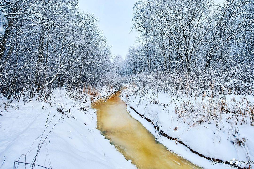 145481544 177679707027461 556845648754803675 n - Наконец-то на Северо-Запад пришла нормальная зима! Очаровательный и прекрасный Ш...