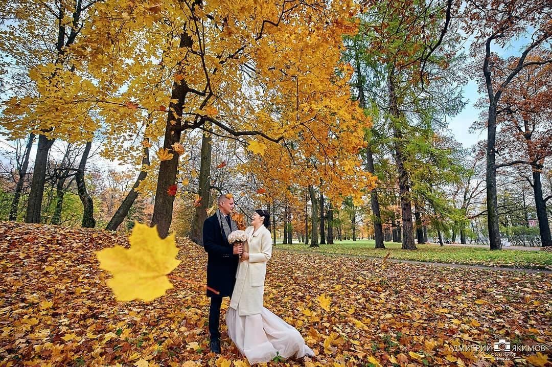 osennjaja feerija jeto vostorg svadebnaja fotosemka - Осенняя феерия! Это восторг! Свадебная фотосъемка...
